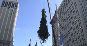Campus Martius Detroit tree in mid-air