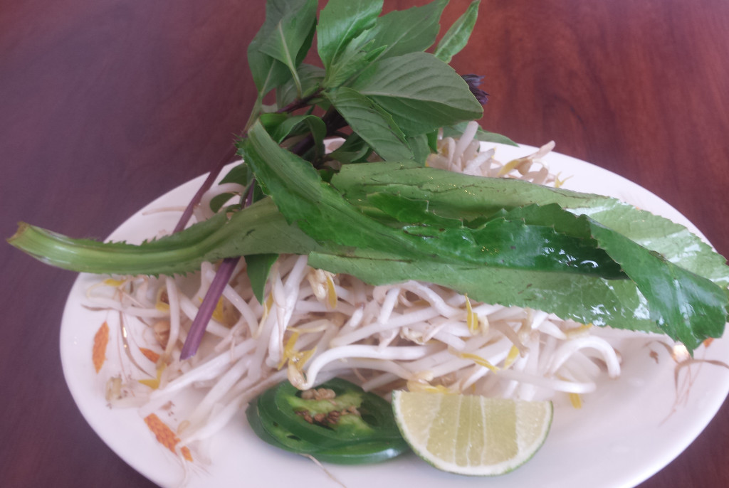 Thuy Trang serves South Vietnamese garnishes: bean sprouts, ngo gai (thorny cilantro), Thai basil and lime.