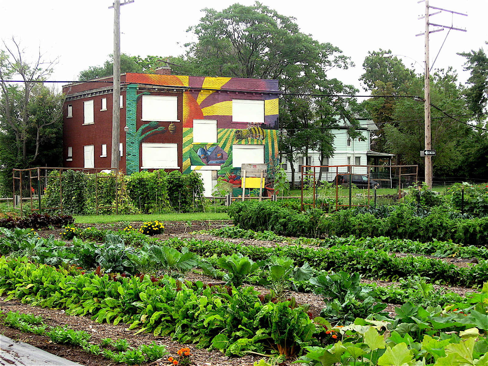 10 detroit urban farms rooting goodness into the city. Black Bedroom Furniture Sets. Home Design Ideas