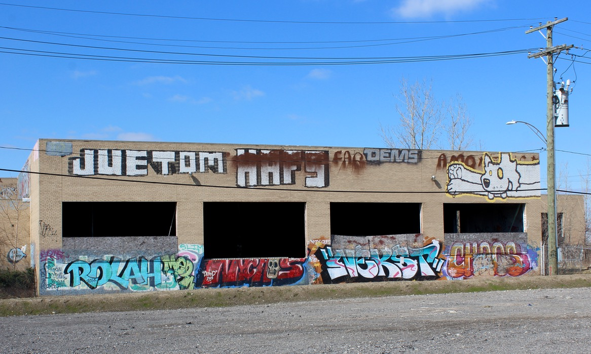 Part of the proposed Detroit Regional Food Accelerator project site. Daily Detroit photo.