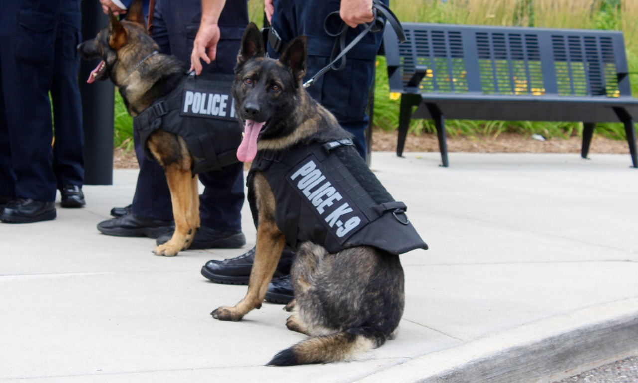 Detroit Police K9 Unit Gets Donation Of Five New Bullet Resistant Vests