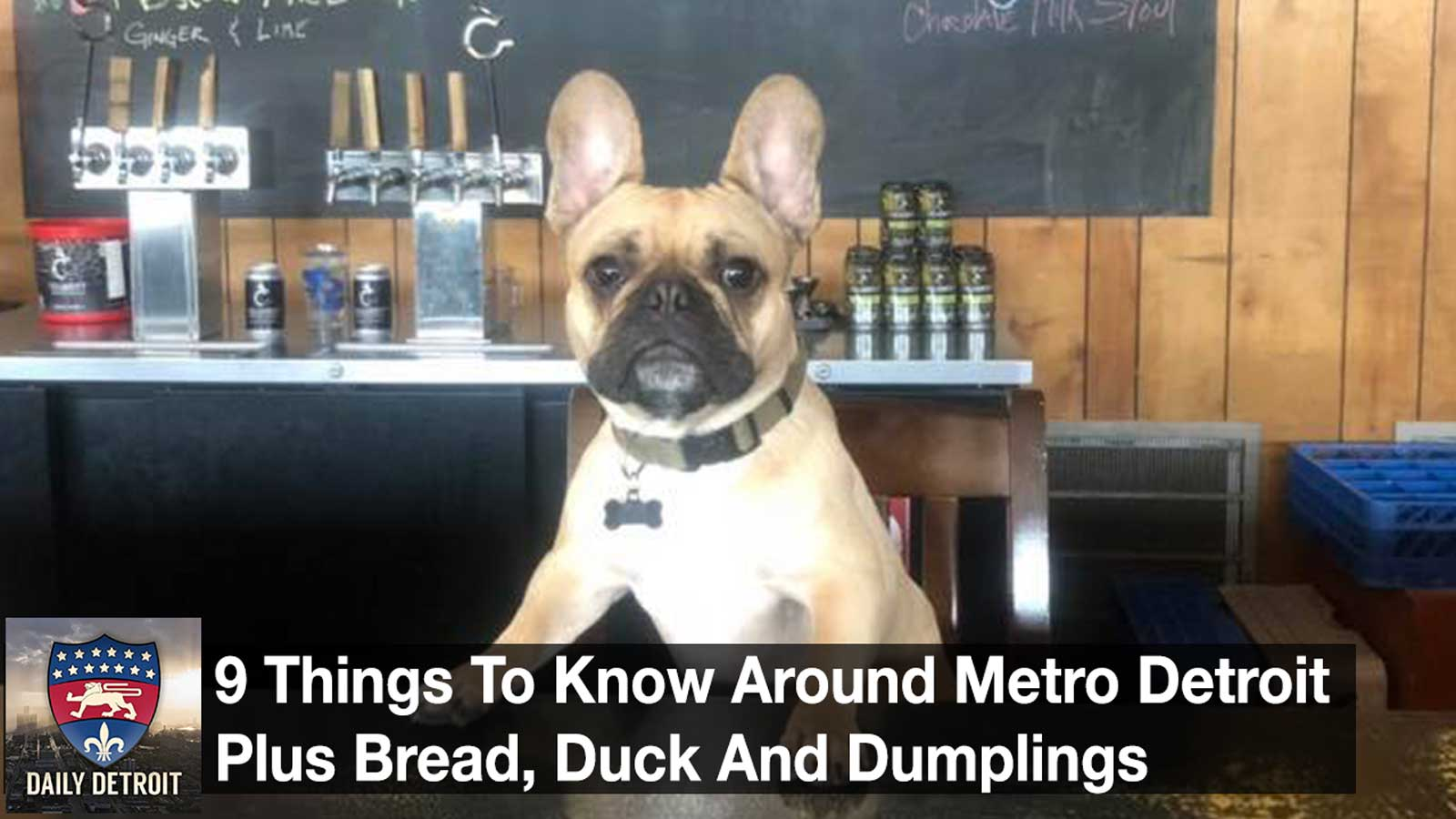 9 Things To Know Around Metro Detroit Plus Duck, Bread And